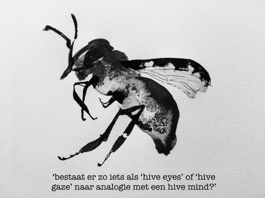 bestaat er zo iets als hive eyes